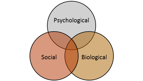 What is the biopsychosocial model immersion therapy what is the biopsychosocial model ccuart Gallery